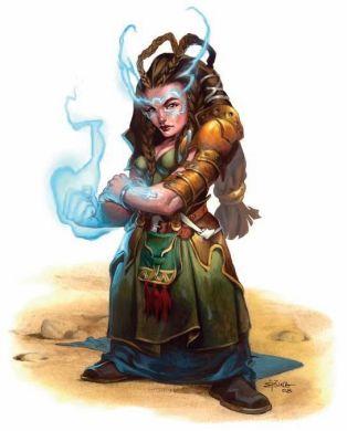 generic wizard 5e